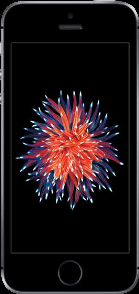 Apple iPhone SE Resimleri